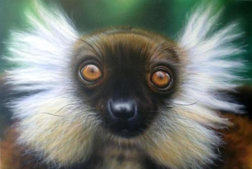 lemurien10x