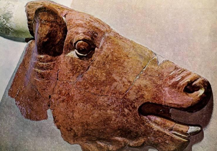Tête de Taureau, Cnossos