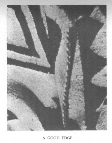 Navajo rug , detail